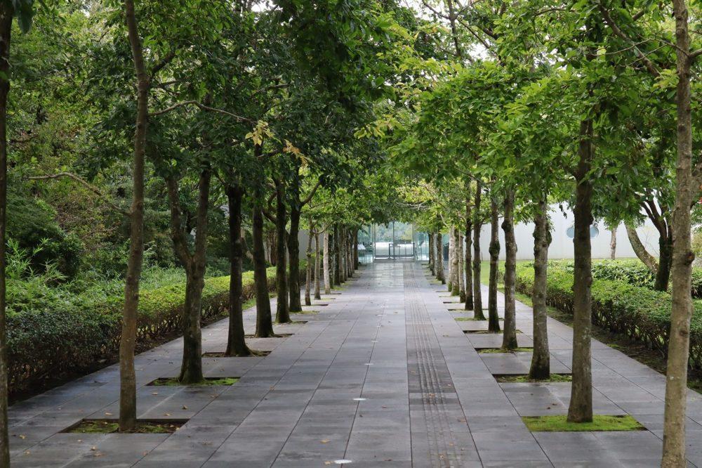 アートホール前並木道