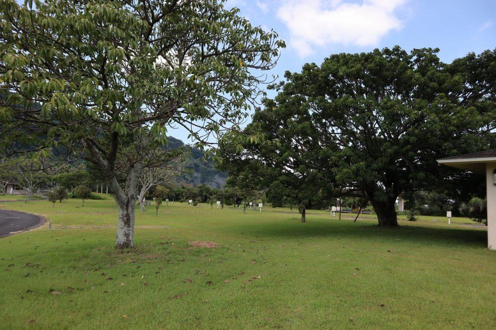 知林ヶ島近くのキャンプ場