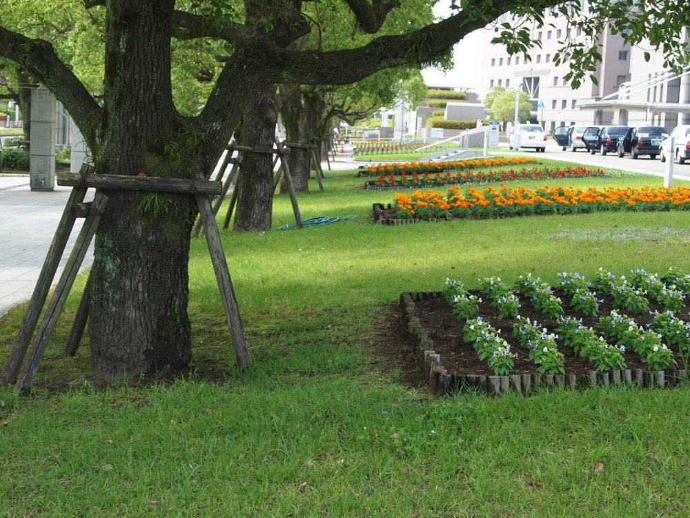 鹿児島県庁の周り
