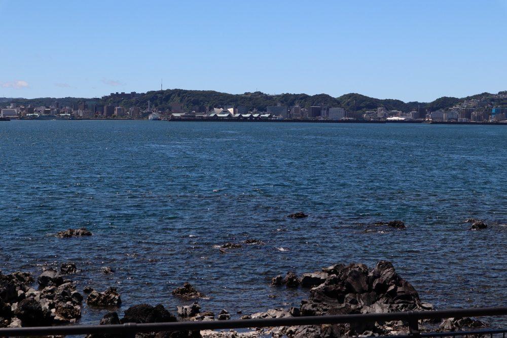 足湯から鹿児島市を望む