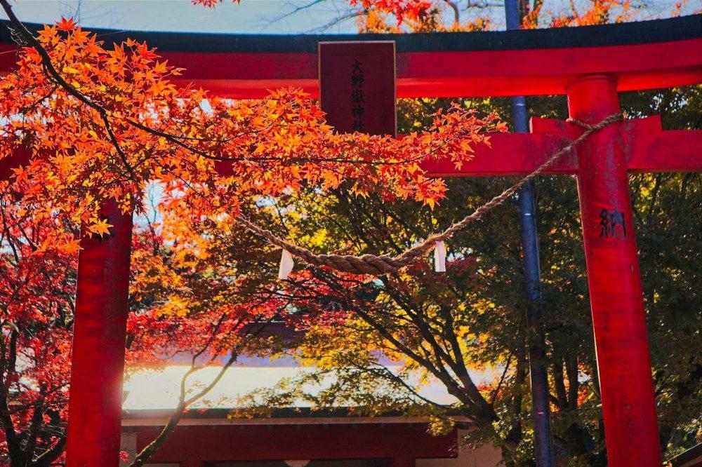 大野嶽神社の鳥居と紅葉
