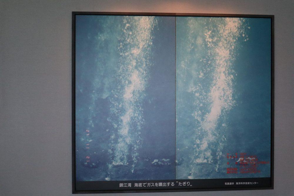 錦江湾のたぎり