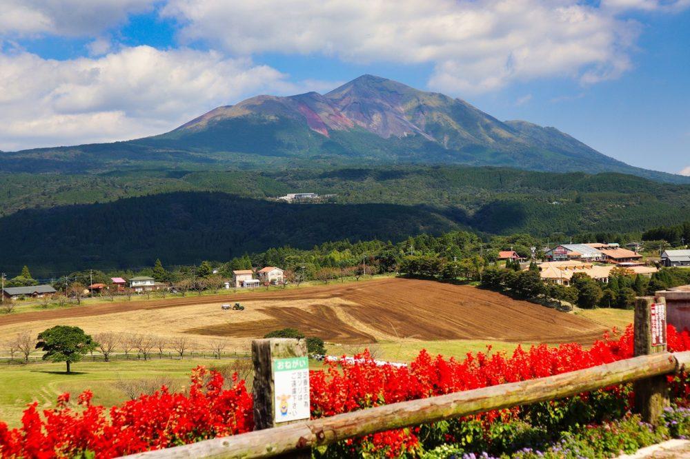 高千穂峰と花